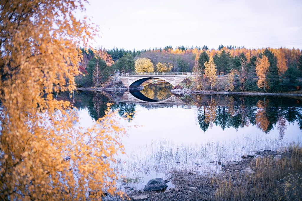 Valokuvausretki Kuhmossa syksyllä ruskan aikaan.