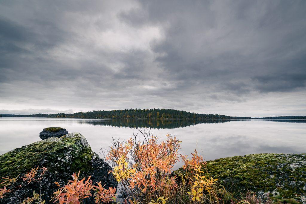 Ruskavärejä järvimaisemassa.