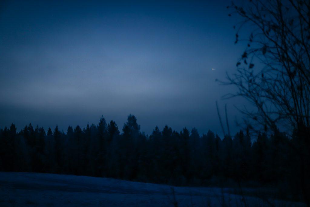 Venus aamuhämärässä.