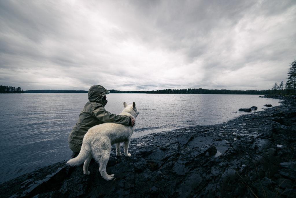 Katsotaan järvelle koiran kanssa.