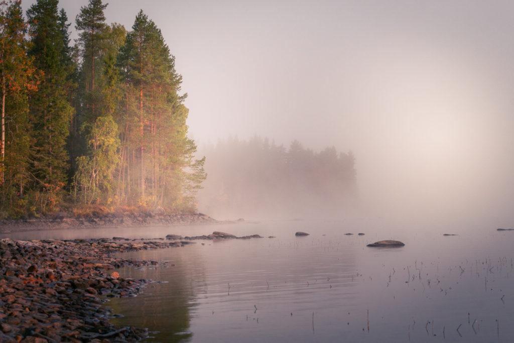 Kaunis aamu-usva järvellä.