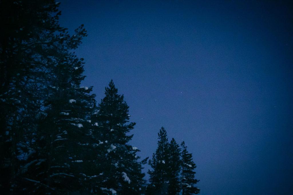 Tuikkivia tähtiä aamutaivaalla.