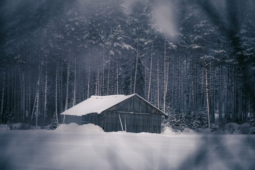 Talvinen peltomaisema.