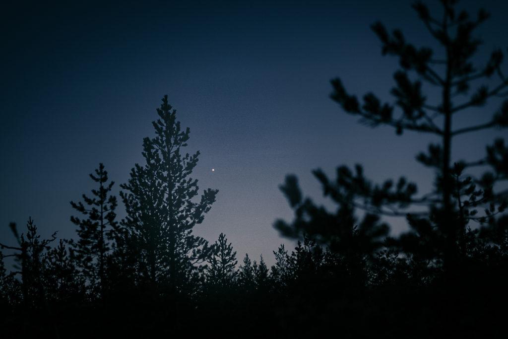 Venus loistaa iltatähtenä.