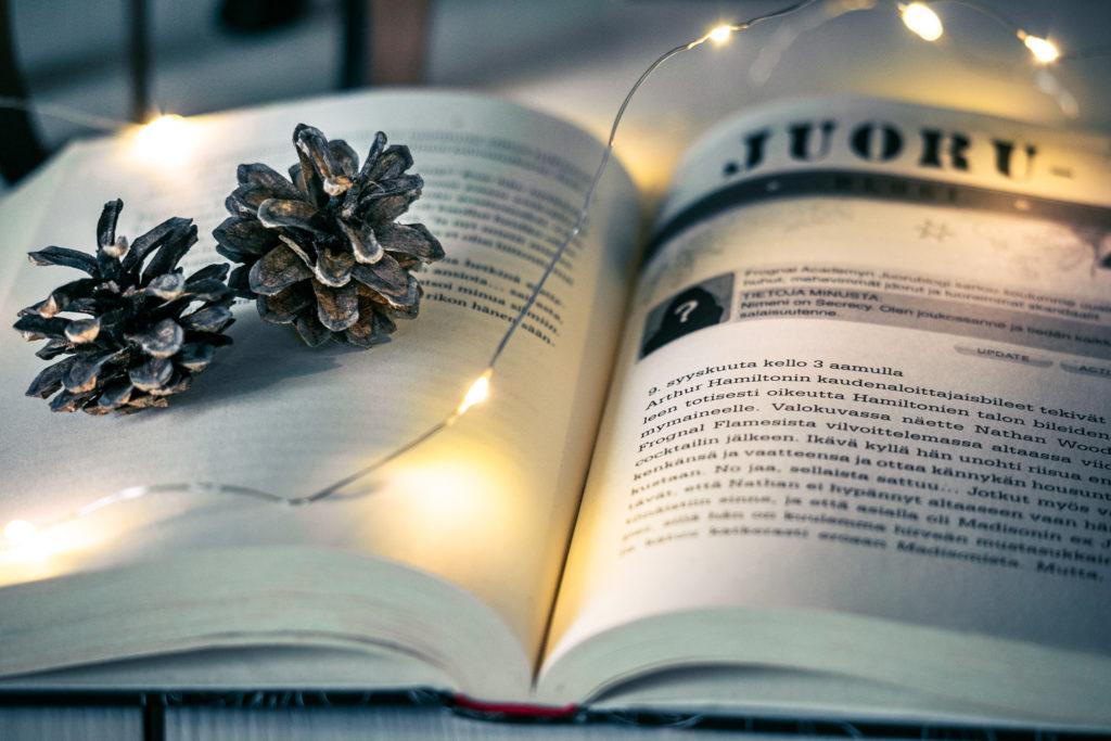 Kerstin_Gier_Lupaus, bookstagram kirjakuva.