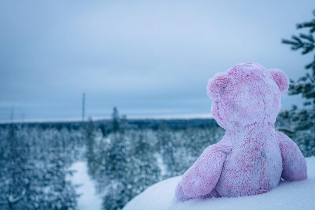 Nalle ja talvinen maisema.