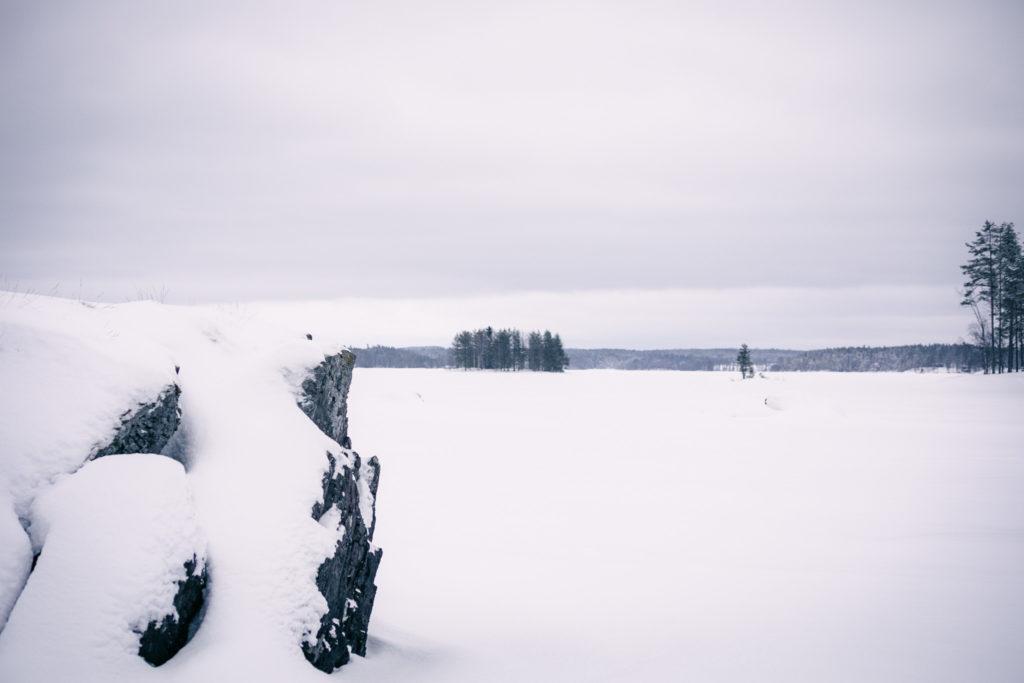 Talvimaisemaa järvellä.