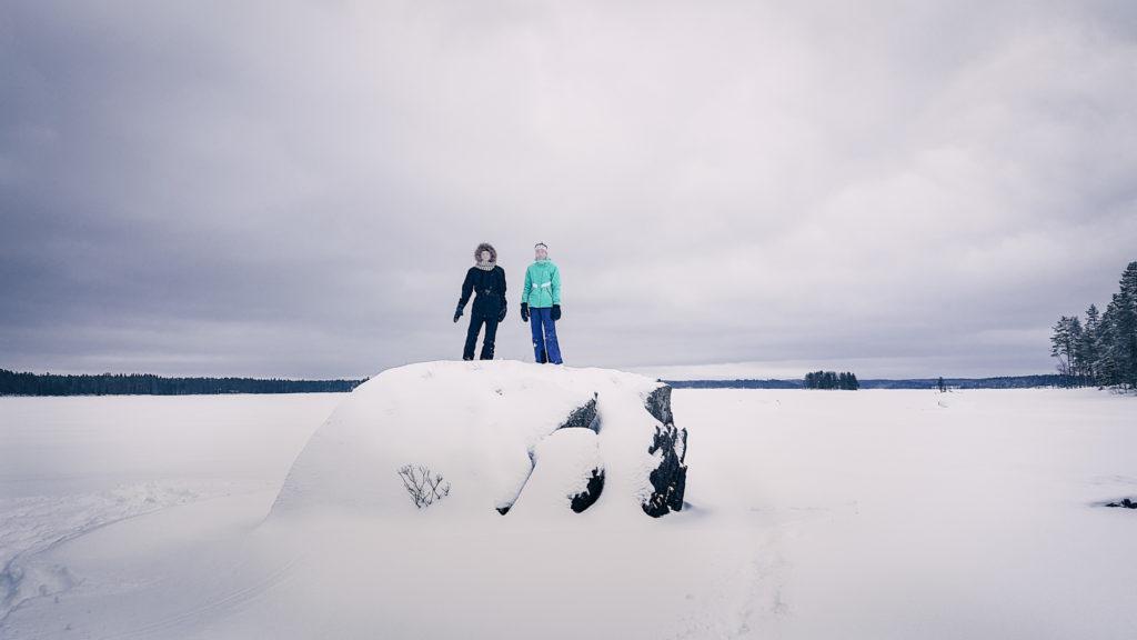 Teiniosasto kiven päällä järvimaisemassa.