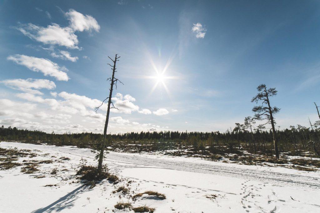 Kevättalven suomaisemaa.