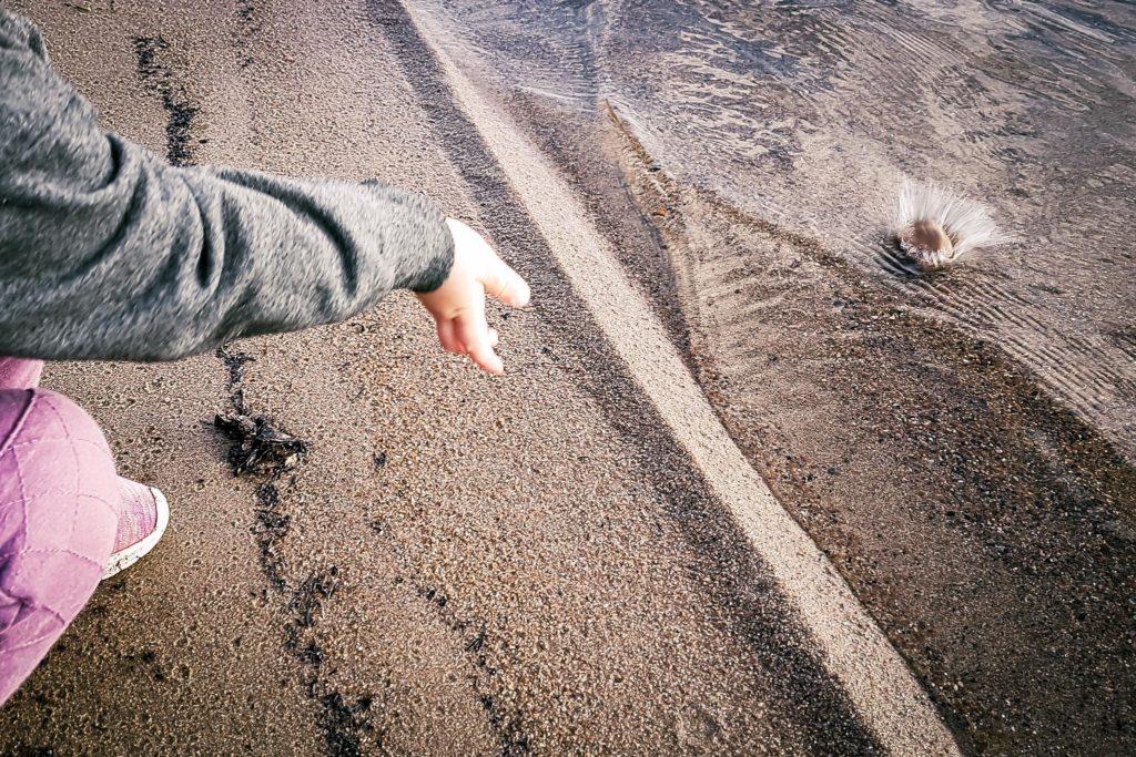 Pikkuretkeilijä rannassa heittelemässä kiviä.