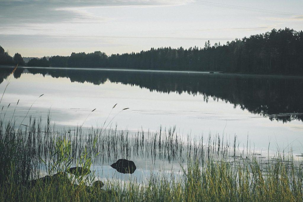 Tyyni järvi aamulla.