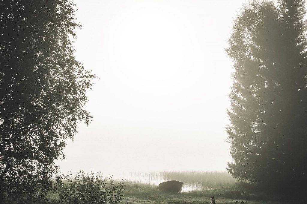 Upea usva järvellä.