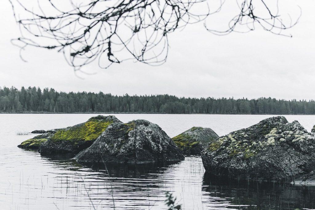 Karikko saaressa.