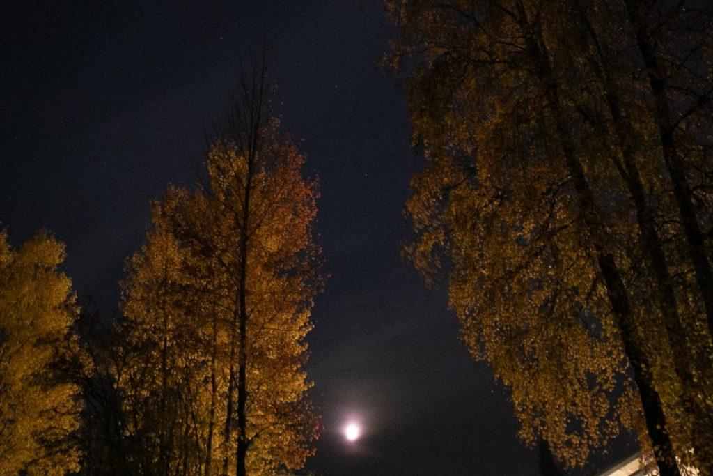 Kuu ja syksyinen ruska.
