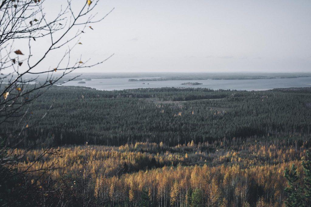 Järvimaisemaa Kainuun Jättiläisenmaassa.