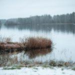 Syksyinen harmaa järvimaisema Kainuussa.