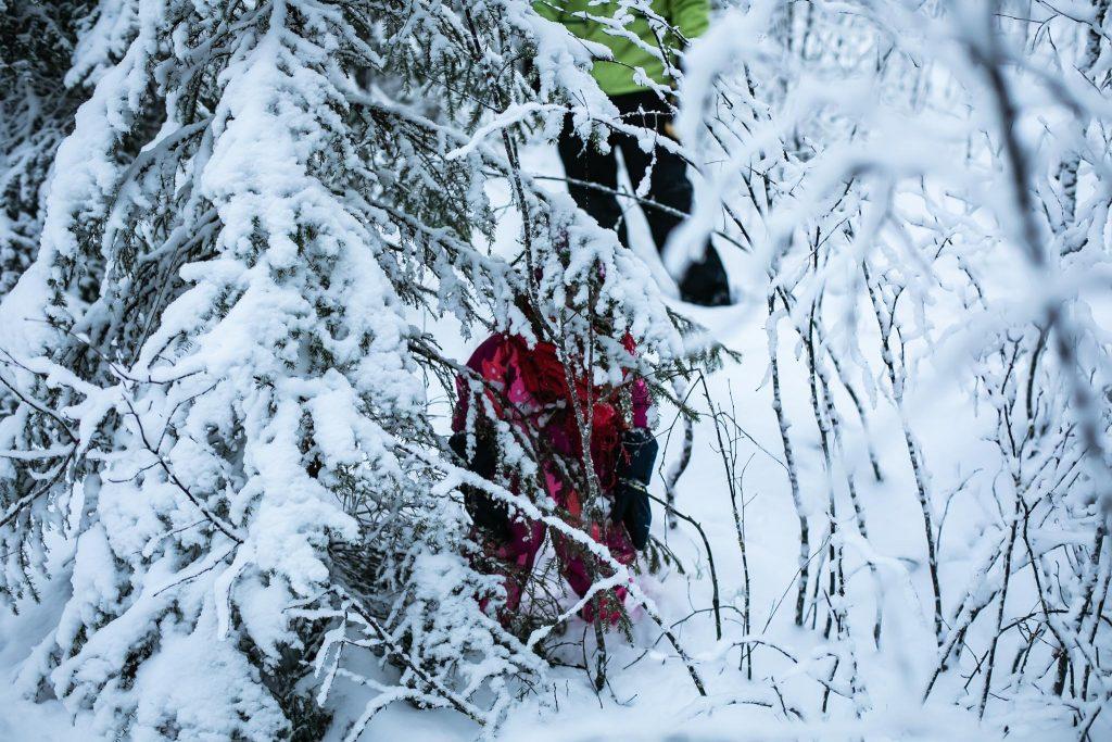 Piilossa metsässä.