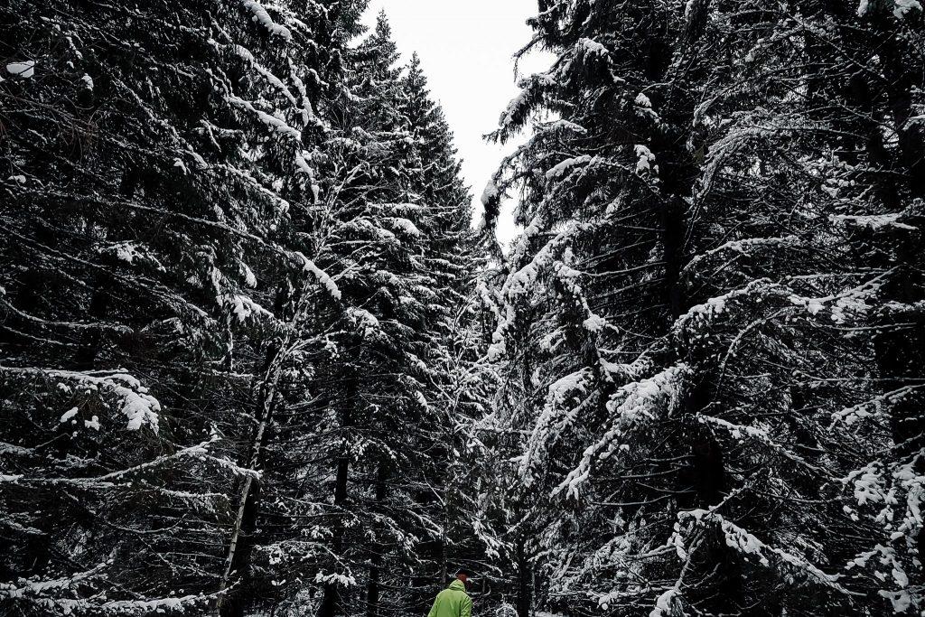 Ulkoilemassa Varjakan luonnonsuojelualueella.