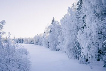 PAKKASPÄIVÄN ULKOILUREISSU KIIMINGIN KOITELINKOSKILLA