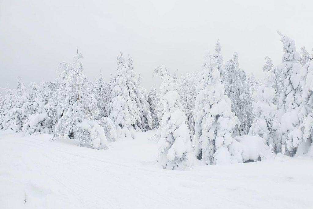 Paltamon Kivesvaaran maisemaa talvella.