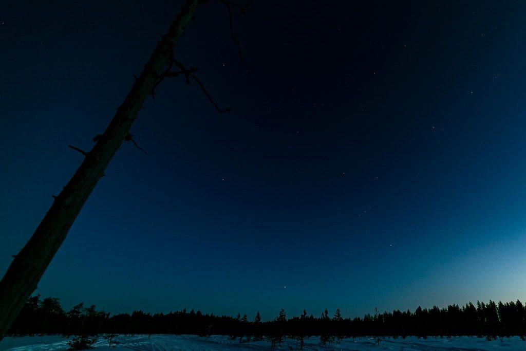 Tähtitaivas suon yllä.