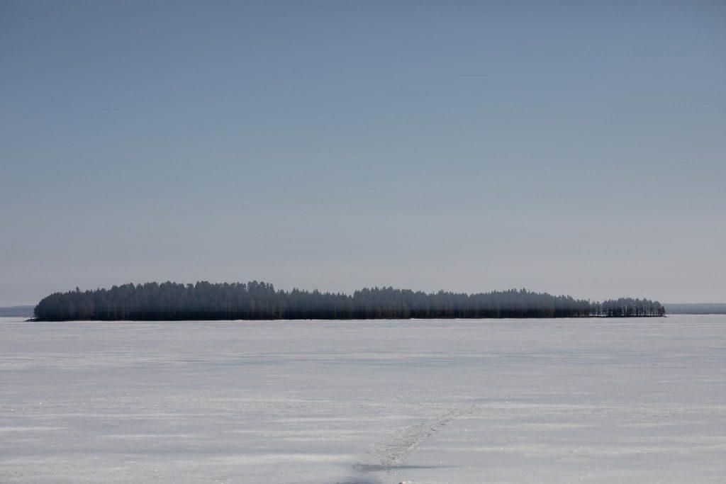 Utuharso roikkumassa järvellä.