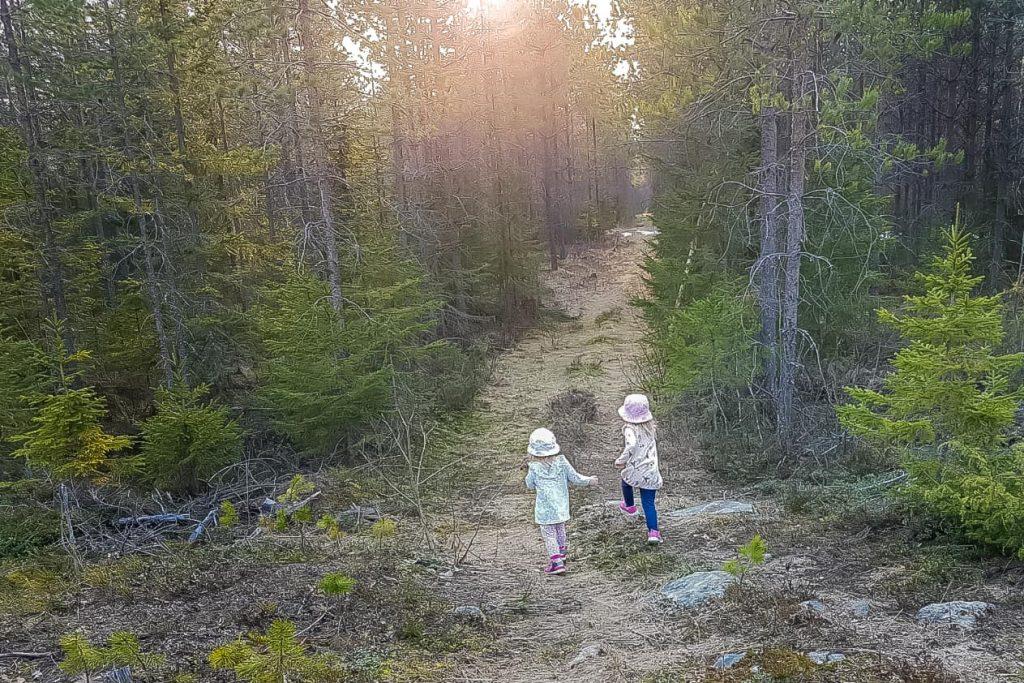 Lasten kanssa metsäkävelyllä.