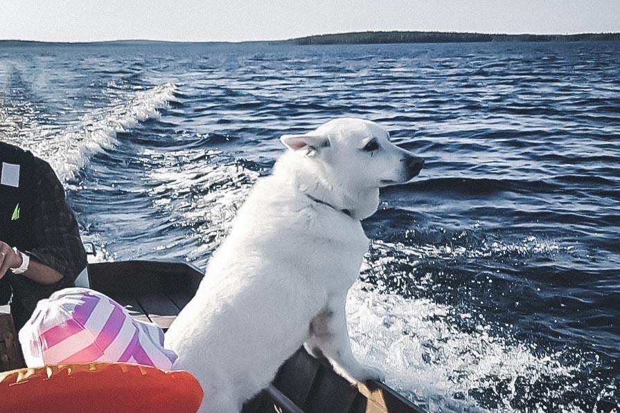 Veneilemässä perheen kanssa.