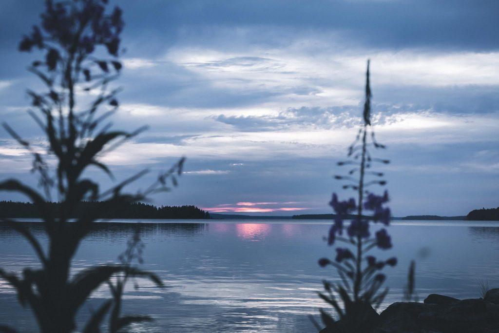 Aamuauringon kajastus järvellä.