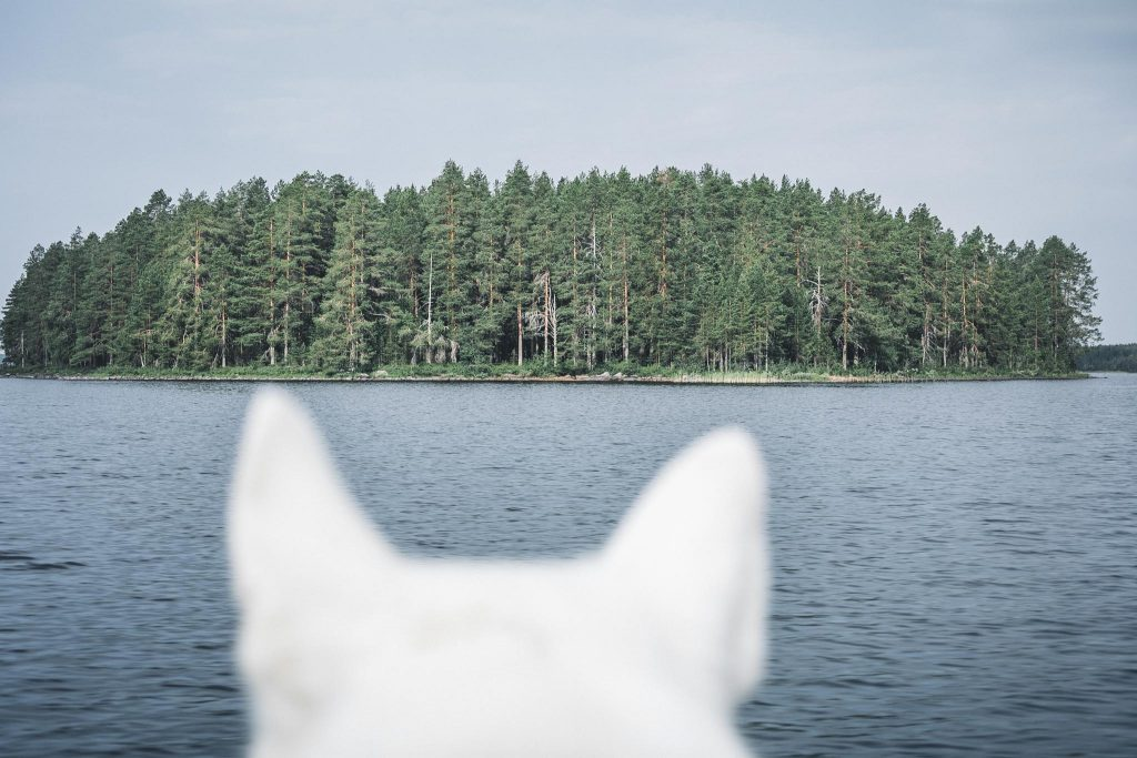 Veneilemässä.