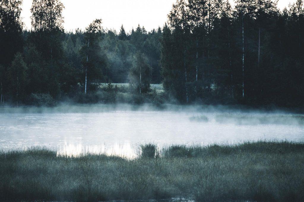 Elokuinen usva järven yllä.